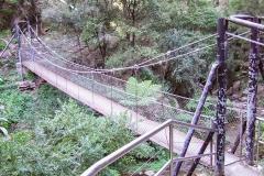 Jenolan River walk, Jenolan Karst Conservation Reserve